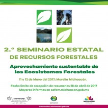 Cartel-2do.Seminario-Internet